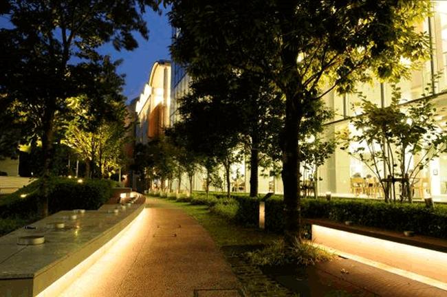 キャンパス裏手の緑地スペース。昼は主婦たちの井戸端会議に、夜はカップルたちにも幅広く利用されているようです