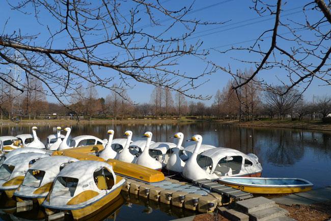 川越市民の憩いの場になっている「川越水上公園」