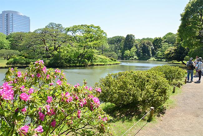 六義園は徳川五代将軍、徳川綱吉に仕えた柳沢吉保がつくった大名庭園。池を中心に都心部とは思えないほどのどかな風景が広がっている