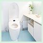 riform_toilet_hiyou90
