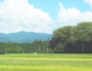 baikyaku-furusato_183x142