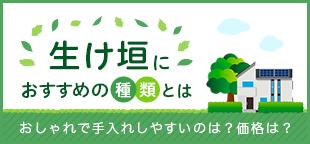 ikegaki_310