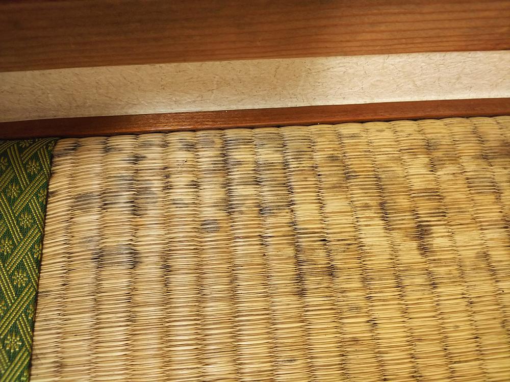 カビが発生してしまった畳の写真