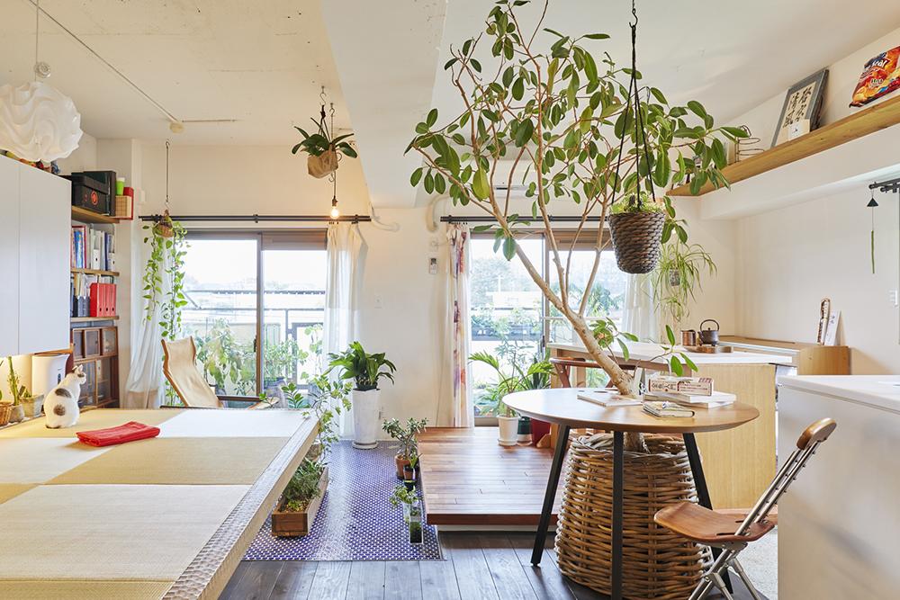 植物を天井から吊るして、天井インテリアを楽しむ人も多い(画像提供:ブルースタジオ)