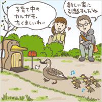 hisshi_main1-1