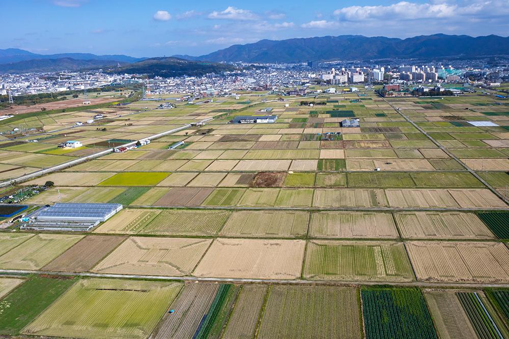 郊外の農地
