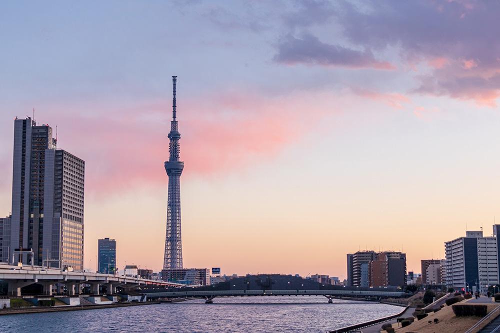 隅田川のリバーサイドから眺められる東京スカイツリー