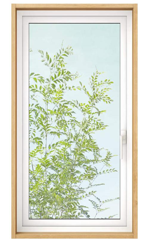 網のない耐熱強化ガラスを使った高断熱窓の例