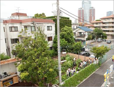 六本木の高層ビル群が見える住宅地に突然広々とした菜園が。
