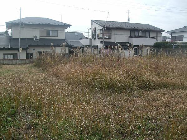大字須和間(東海駅) 300万円
