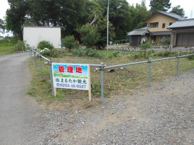 日川 204万円