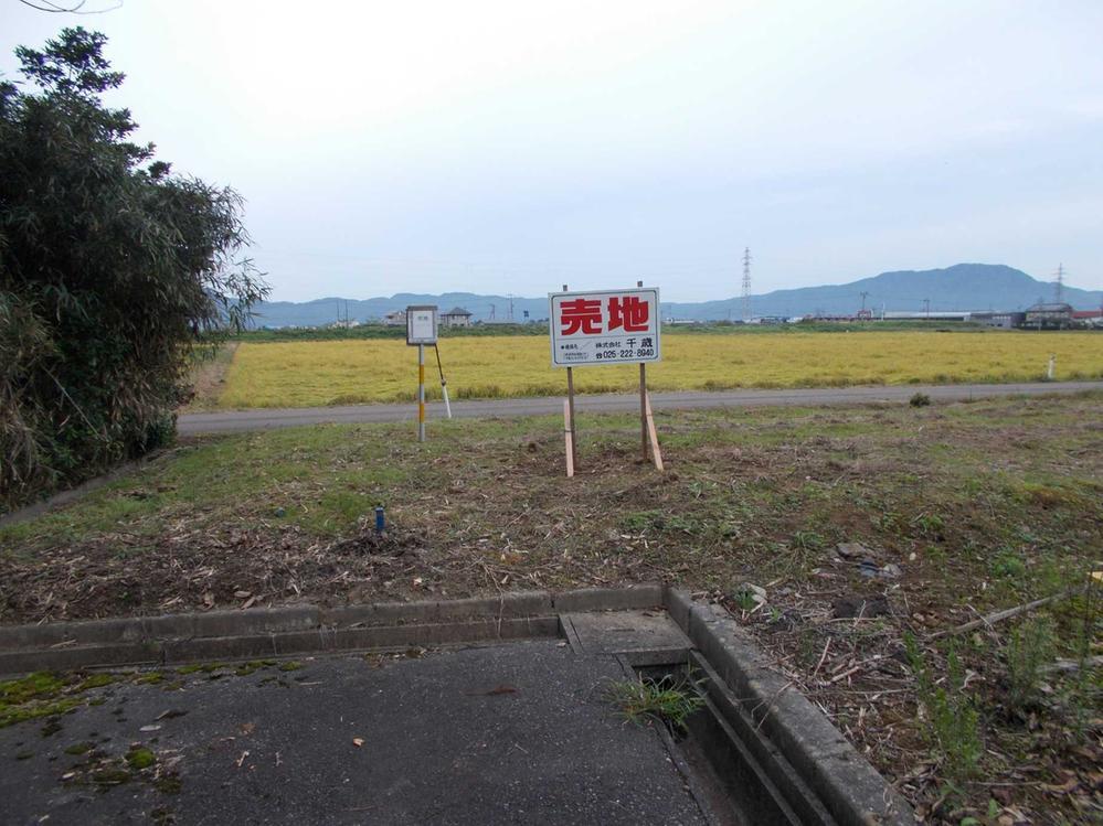 桜林(岩室駅) 300万円
