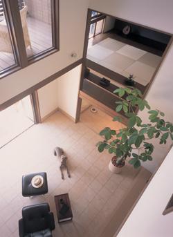 土間リビングは開放感のある吹き抜けを擁し、右手の1階蔵とその上のスキップリビングをほどよい距離感でつないでいる