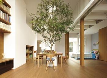 「蔵」で居室をより広く。3.5mの天井高が圧倒的な開放感を生む。通風や採光もデザインされた居心地のよい空間