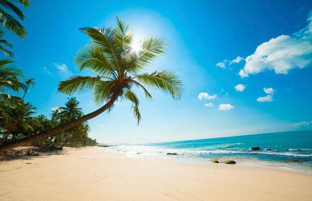 世界の避暑方法はどんなもの?熱帯地域で暮らす人に学ぶ暑さ対策