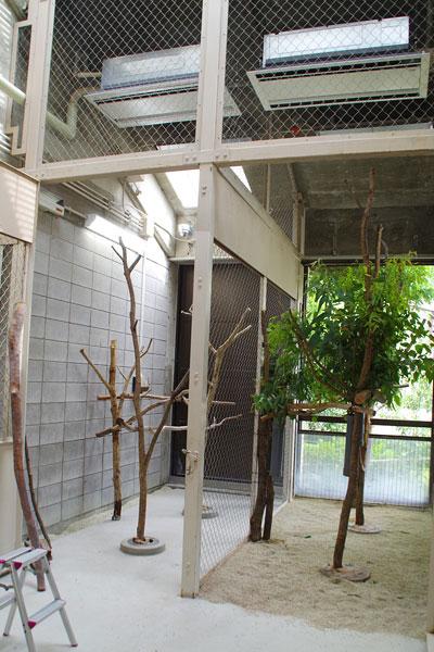 動物園のコアラ部屋がエコで快適にリフォーム!その住み心地は?