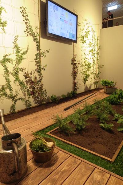 【画像5】シェアガーデンを1階庭や屋上庭園に設定(写真撮影:藤井繁子)