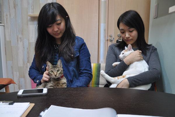 【画像1】猫も人も幸せそう。膝のうえが大好きで、とってもフレンドリーな猫たち(写真撮影:嘉屋恭子)