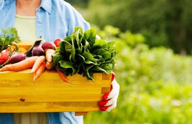 練馬区が開設する「農の学校」で、本格的に農業を学ぼう(写真: iStock / thinkstock)