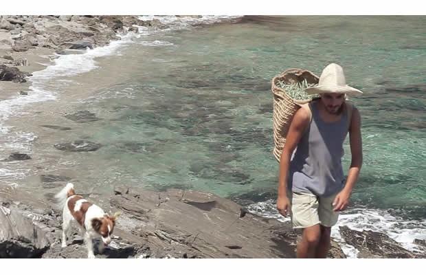 沖縄・西表島への移住者に、島暮らしの魅力を聞いてみた(写真提供:(C)ANEMON)