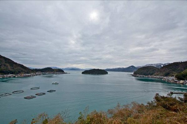 【画像5】半島に囲まれ日本海の荒波から守られた静かな湾には、ぐるりと取り囲むように舟屋建築が立ち並び、その数は約230軒。想像以上に沢山の家々が連なっている風景に驚く(写真撮影:井村幸治)