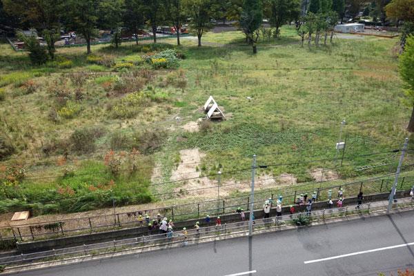 【画像6】散歩中の幼稚園児がヤギを観察(写真撮影:金井直子)