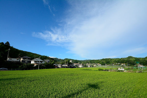 【画像2】高槻市最北部の「樫田地区」に広がる田園風景(写真提供:高槻市)