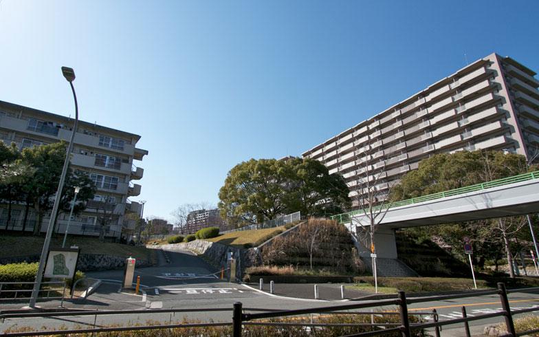 【画像3】新千里東町の分譲型団地建て替えマンションの一例。左にはURの賃貸団地(写真撮影:井村幸治)