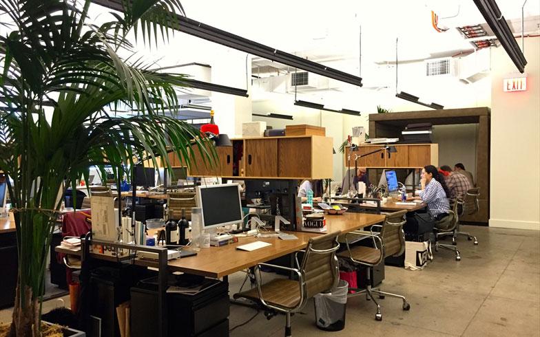 【画像4】2階から上は執務スペース。たくさんの観葉植物が置かれ、デスクも木材で出来ているため落ち着いた印象。個人で働く人々が固定デスクを契約している(撮影:小野有理)