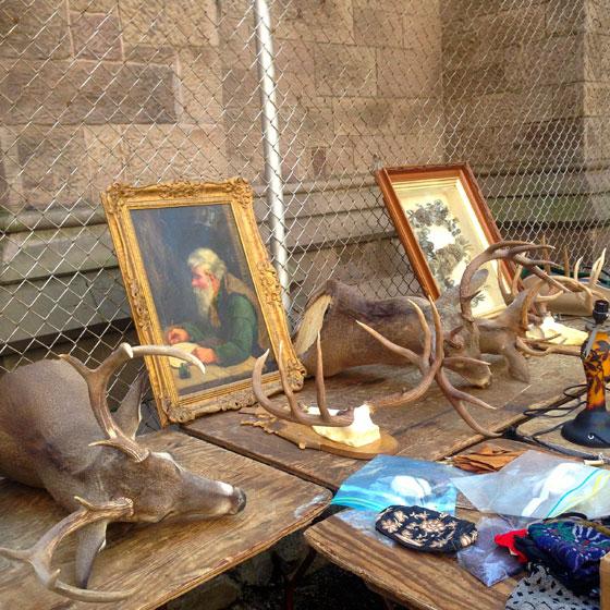 【画像5】古めかしい品が並ぶ。鹿の頭・角はもちろんホンモノ。中には「誰が買うんだろう?」と不思議になるような品もたくさん(撮影:小野有理)