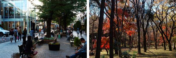 【画像2】自由が丘グリーンストリート(左)/吉祥寺・井之頭公園(右)(写真:街画ガイド)