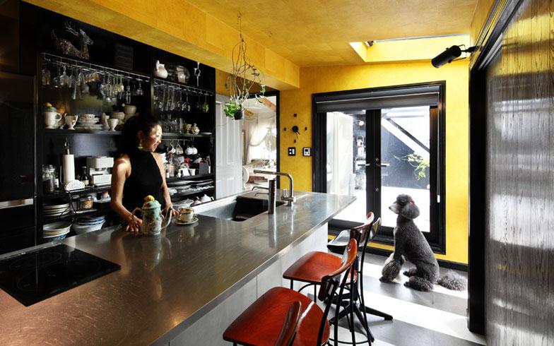 【画像9】キッチンはトーヨーキッチンスタイル社の大型ステンレス製。黄金色の壁紙を天井まで貼り、黒とシルバーとのコントラストが綺麗(写真撮影:NOB川谷)