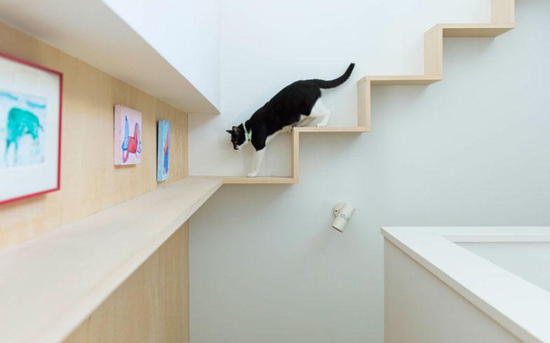 【画像2】階段部分をゆっくりウォーキング(写真撮影:和田真典)