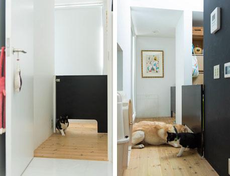 【画像3】猫だけするっと通り抜けられる(写真撮影:和田真典)