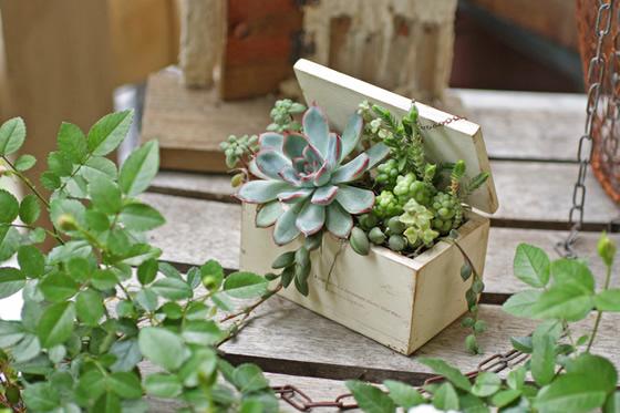 【画像1】Greenの宝箱(写真提供:小屋女子計画)