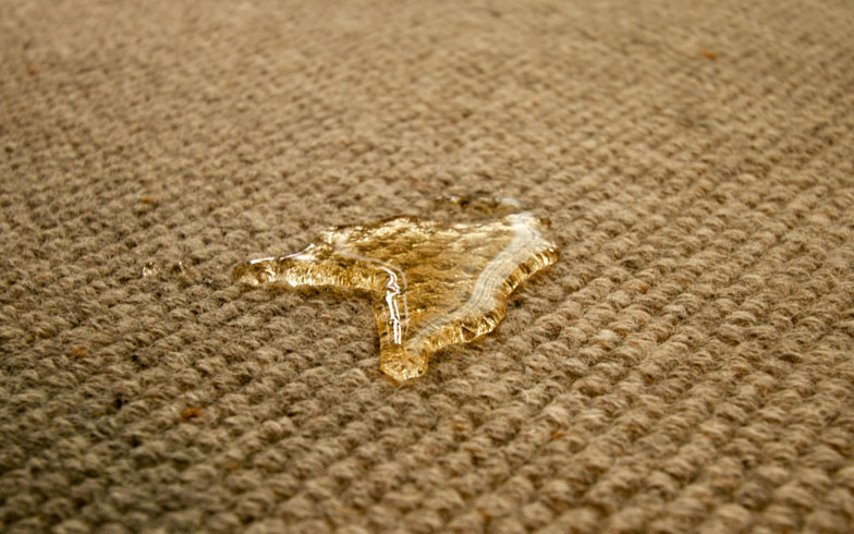 【画像8】目の前でお茶をカーペットにこぼして実験。しばらくは弾いているので、その間に吸い取ると跡も残っていなかった(写真撮影:井村幸治)