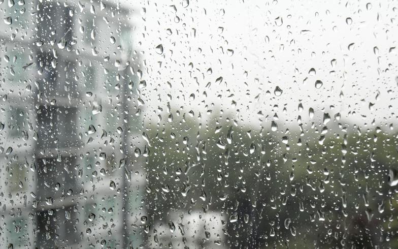突然の雨漏り! 賃貸なのに雨漏りしたら、どうすればいい?