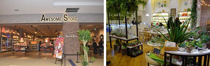 【画像16】左:かわいいデザインなのにプチプライスで人気の雑貨店「AWESOME STORE」(撮影:SUUMOジャーナル編集部)。右:スキンケア商品などオリジナルアロエ商品を扱う「アロエガーデン」(撮影:金井直子)