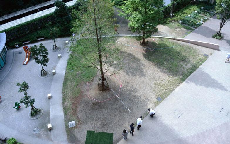 【画像1】手入れする前の庭の様子。芝もまばらだ(画像提供:ブラウシア管理組合)