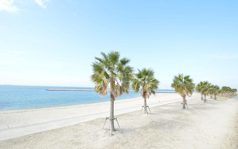 【画像13】長さ約630mと、人工ビーチとしては東海地区最大級である「りんくうビーチ」。砂浜からは飛行機が間近に見える(写真提供:イオンモール株式会社)