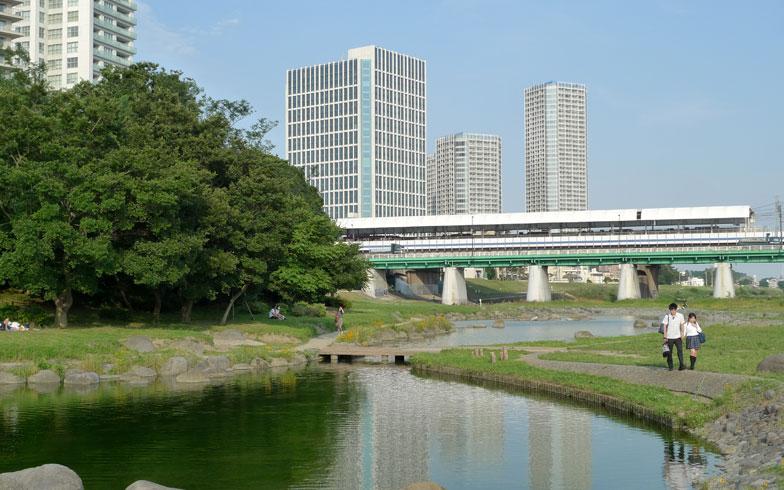 【画像2】駅からすぐ近くには多摩川の河川敷が広がっていて、「兵庫島公園」(写真)などが整備されている。田園都市線の後ろにそびえるのがライズのビル群(写真撮影:次にくる住みたい街はここだっ!取材班)