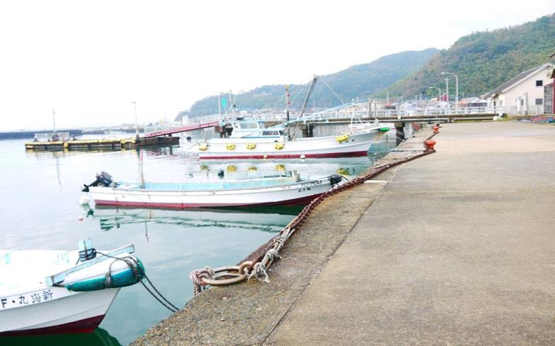 【画像2】漁師のまちの志賀島。住宅地から5分圏内に港がある(写真撮影/フルカワカイ)
