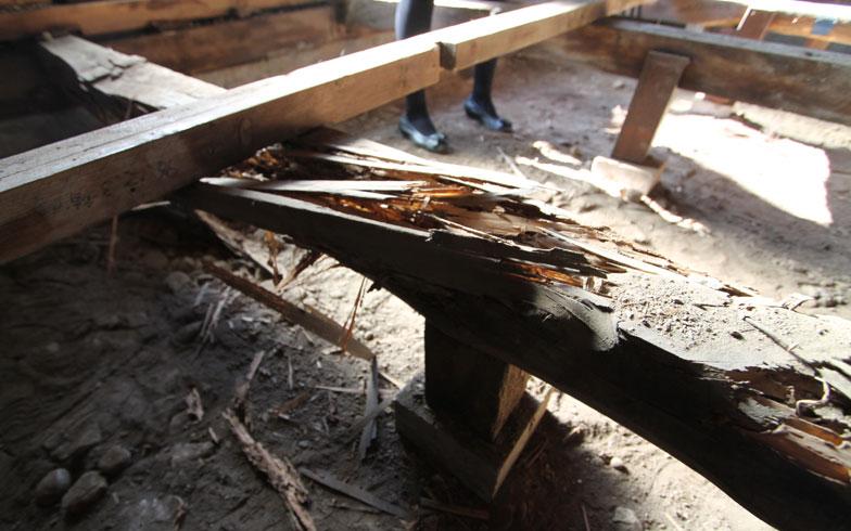 【画像5】床下の構造材(大引き)の一部は劣化していた(写真:リビタ)