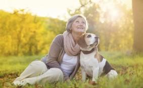 「シニア世代のペット飼育」、放棄しないための対処法とは