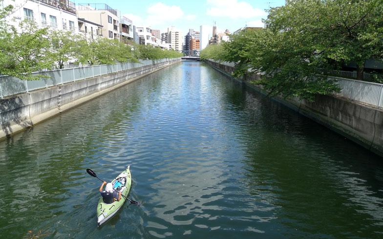 【画像2】清澄白河を流れる運河のひとつである仙台堀川。桜が植栽された川沿いには遊歩道が整備されていて、春のお花見の時期には多くの人出でにぎわう(写真撮影:次にくる住みたい街はここだっ! 取材班)