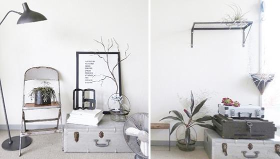 【画像4】左は、無機質でクールなテイストにしっくりくるブランチ(右側)。右は、空間のポイントになるように、棚の上にある「ティランジア」や多肉植物のフェイクをところどころに配置している(画像提供:ak3)