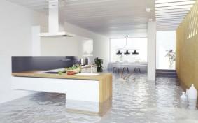 水害に備えた保険加入が31%にとどまる理由とは