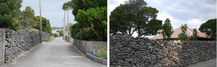 【画像2】サンゴを積んだ石垣も、今では入手しづらいことやメンテナンスのしやすさなどの理由でブロック塀に代わっている家も。修繕で色の違いがあるサンゴの石垣も(写真撮影:伊藤加奈子)