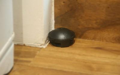 春到来! わが家のゴキブリを徹底的に退治するには?
