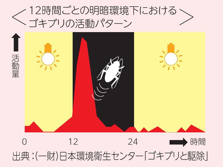 【画像1】夜行性のゴキブリは、周りが明るい間は活動せず、暗くなってからの活動量がグンと増えることが分かる。特に、卵を持ったメスはあまり出歩かないので駆除が難しいそう(画像提供:アース製薬)